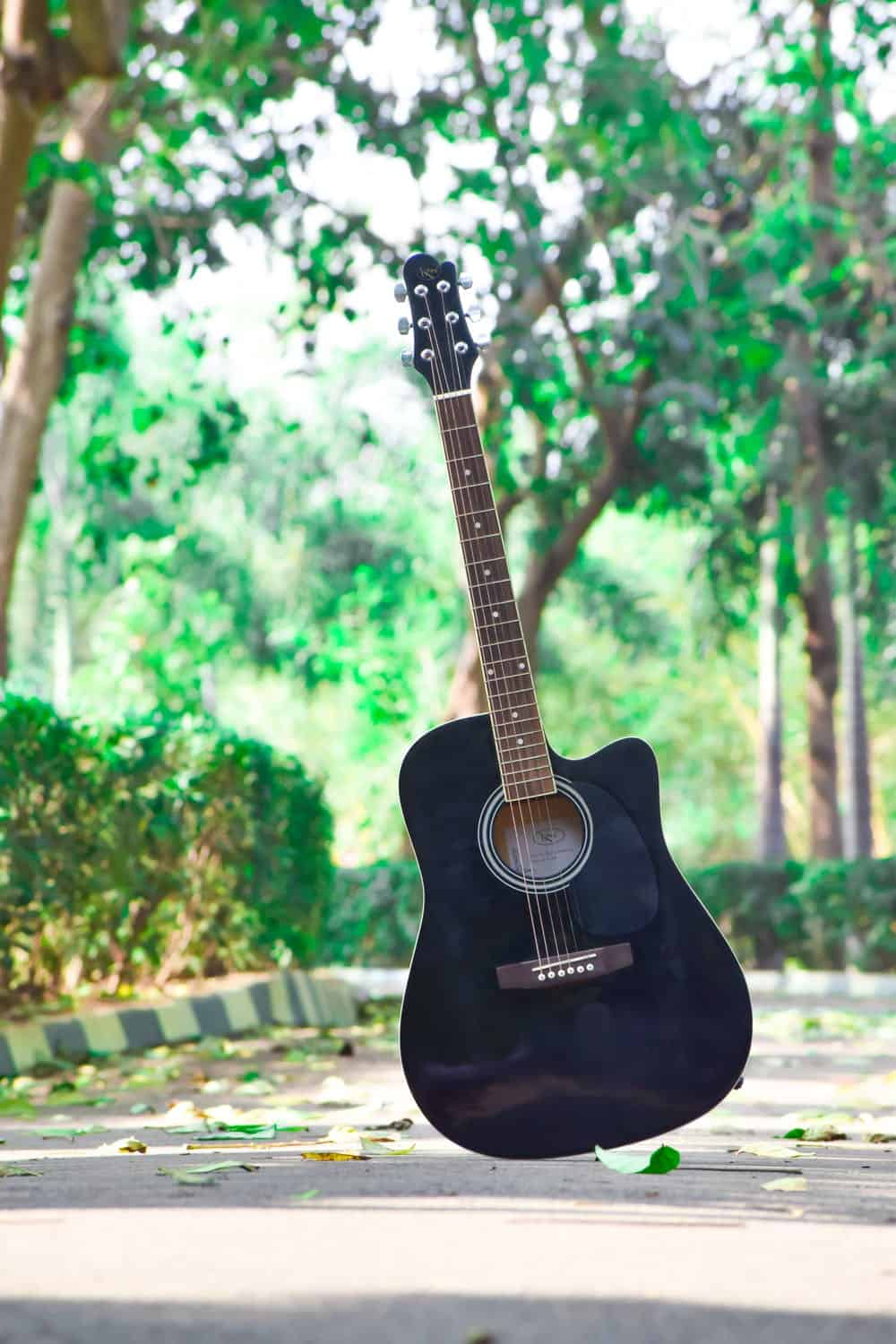 Learn the Basic Guitar Chords with A SONG!